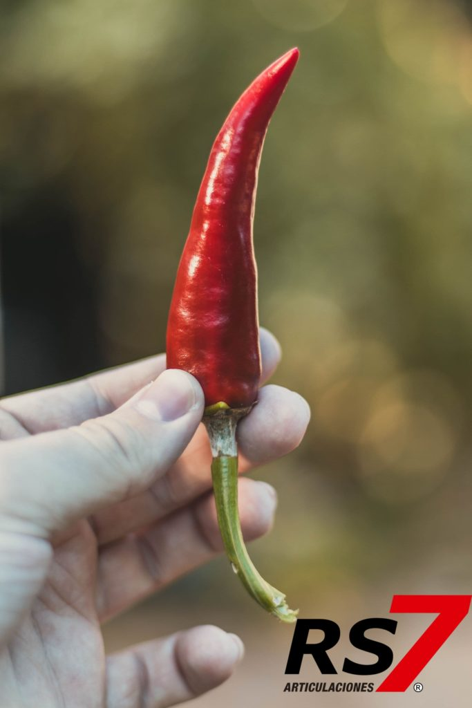 capsaicina antiinflamatorio natural